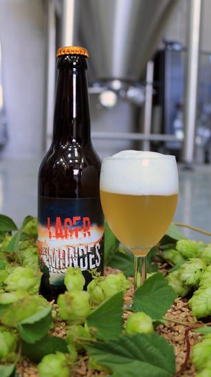 Bière lager de fermentation basse